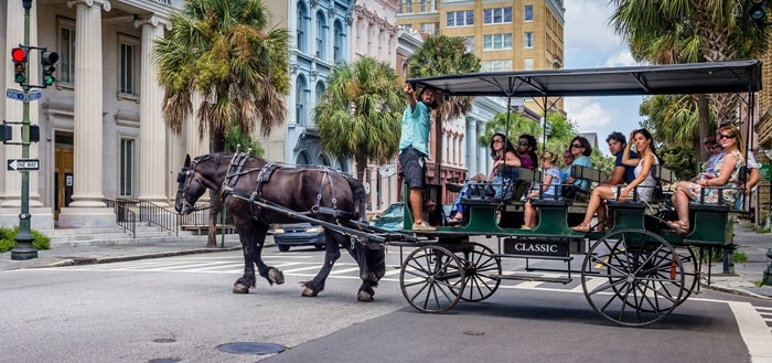 Horse and Carriage in the City