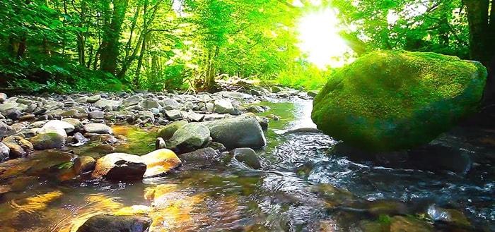 Water Stream Sound