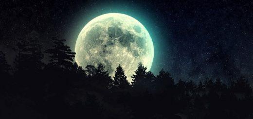Night Ambience Loop