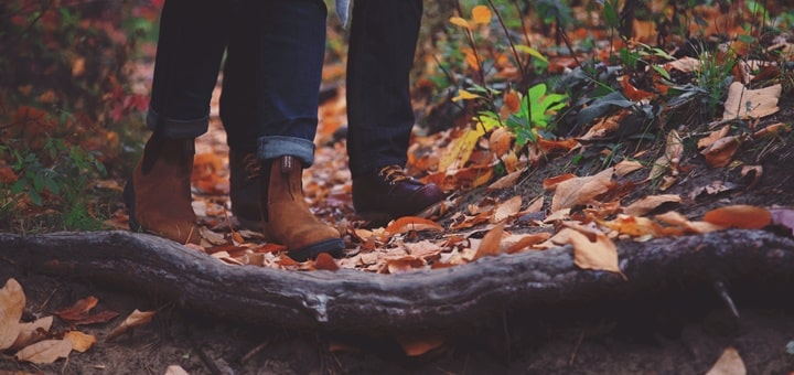 Fast Footsteps on Dry Leaves Sound Effect