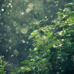 rain noise loop