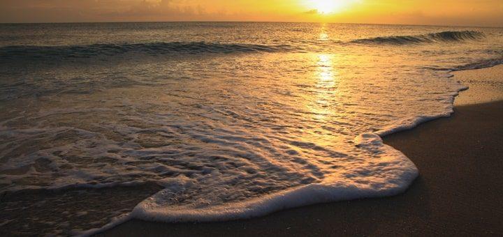 Calming Sea Sounds