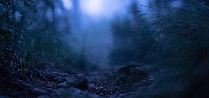 Horror Creepy Background Sound Effect