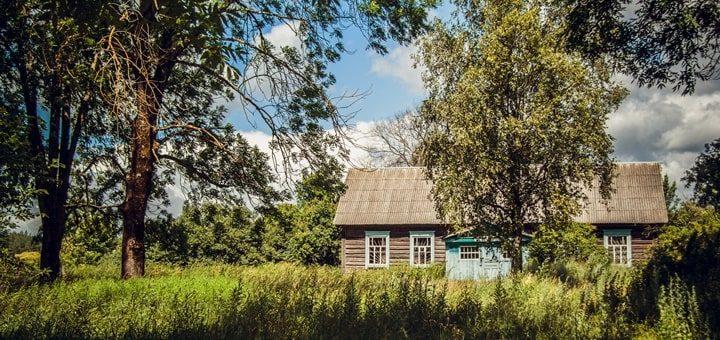 Birdsong in a Village Garden Sound Effect