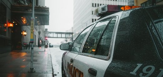 Short Police Siren Sound Effect