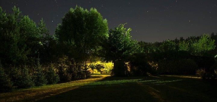 Night Ambience